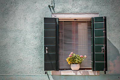 Flowers In The Window 3 Print by Chris Fletcher