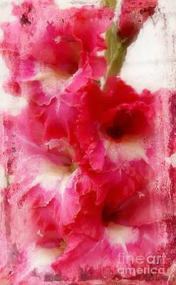 Flowers Melt My Heart Print by Anita Faye