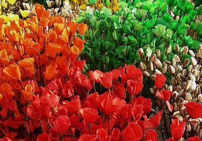 Flowers Print by Mohammed Nasir