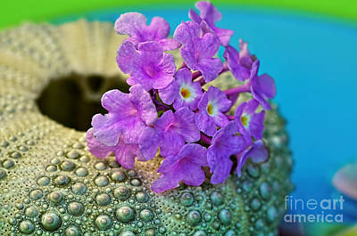 Flowers On A Shell By Kaye Menner Print by Kaye Menner