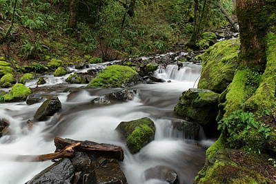 Forest Floor Photograph - Flowing Through The Moss And Rocks by Jeff Swan