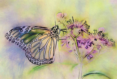 Violet Photograph - Flutterfly Three by John K Woodruff