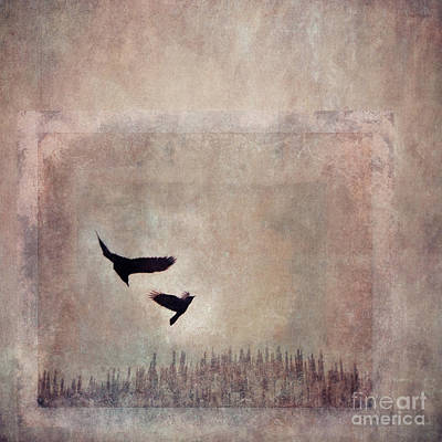 Raven Photograph - Fly Dance by Priska Wettstein