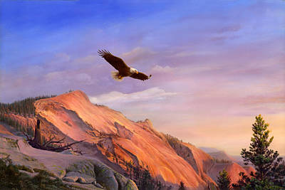 Flying American Bald Eagle Mountain Landscape Painting - American West - Western Decor - Bird Art Print by Walt Curlee
