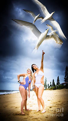 Flying Seagull Photograph - Flying Birds by Jorgo Photography - Wall Art Gallery