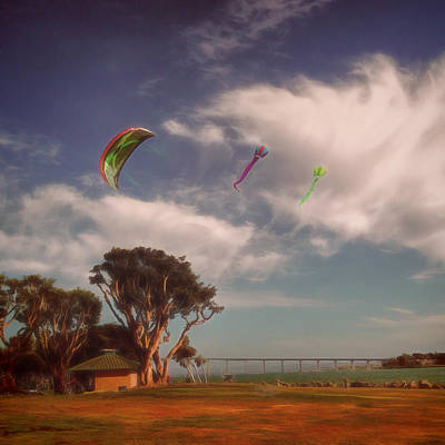 San Diego Embarcadero Park Photograph - Flying High by Claude LeTien