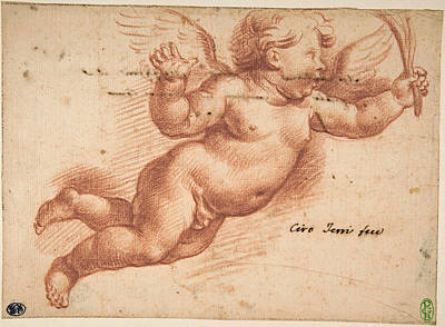 Drawing - Flying Putto by Ciro Ferri