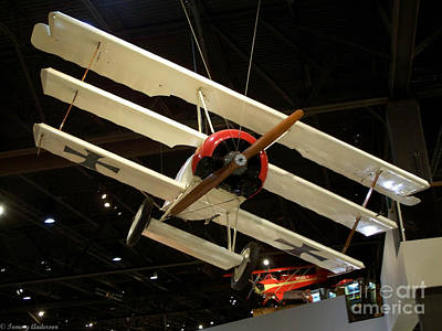 Focker Tri-plane Original by Tommy Anderson
