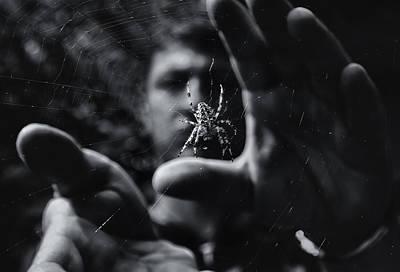 Web Photograph - Focus by Mario Pejakovic