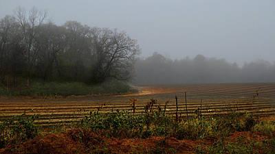 Fog In The Field Print by Laura Ragland