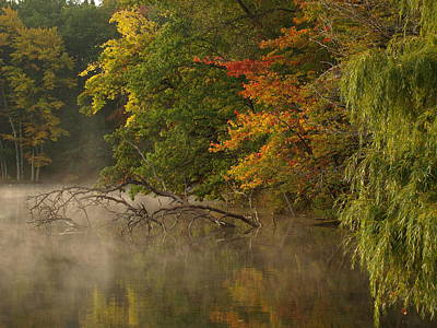 Tommytrout Photograph - Fog Rolls Into Fall by Thomas Young