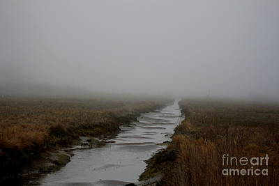 Nature Photograph - Foggy Estuary At Point Judith  by Neal Eslinger