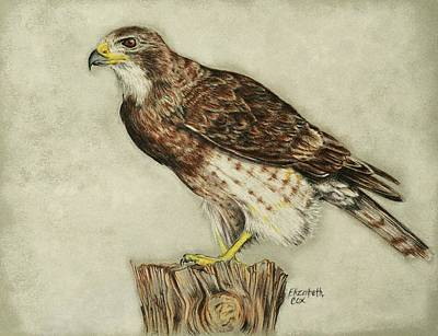 Falcon Mixed Media - Foggy Morning by Elizabeth Cox