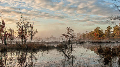 New Jersey Pine Barrens Photograph - Foggy Morning In The Pines by Louis Dallara