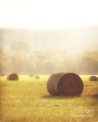 Photograph - Foggy Morning by Tamyra Ayles