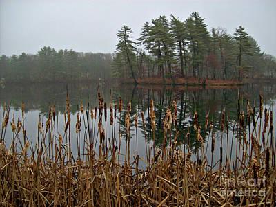 All Faa Photograph - Foggy Reflections by Mary Ann Weger
