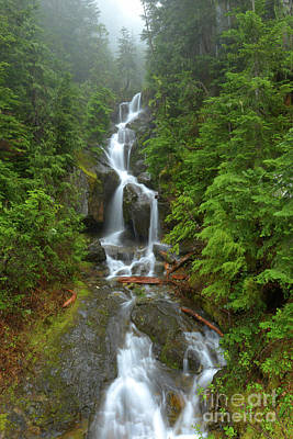 Green Forest Photograph - Foggy Spring Cascade by Mike Dawson