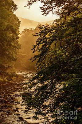 Foggy Sunrise Along Williams River Print by Thomas R Fletcher