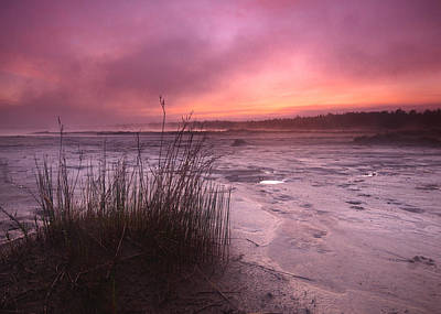 Foggy Sunset At Singing Sands Print by Cale Best