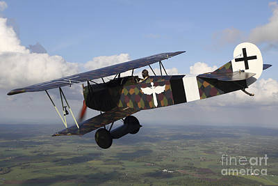 Foreign Military Photograph - Fokker D.vii World War I Replica by Daniel Karlsson