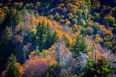 Foliage From Chimney Tops Print by Rick Berk