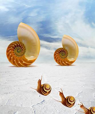 Surreal Art Mixed Media - Follow Your Dreams by Jacky Gerritsen