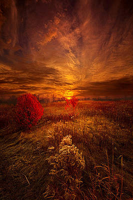 Hope Photograph - Following Your Heart by Phil Koch