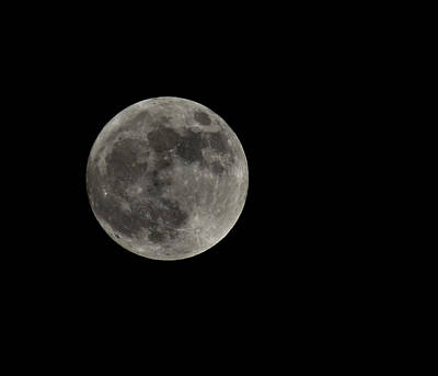 Joshua Massenburg Photograph - Fool Moon by Joshua Massenburg