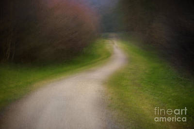 Icm Photograph - Footpath by Richard Thomas