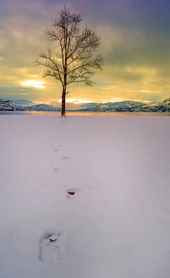 Photograph - Footprints In The Snow At Hulley Beach by Tara Turner