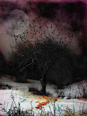 Starlings Digital Art - for Sledding and Starlings by Mimulux patricia no