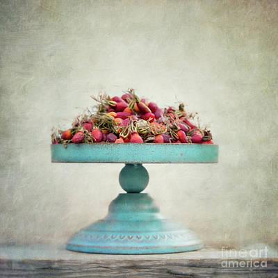 Red Fruit Photograph - Foraging by Priska Wettstein