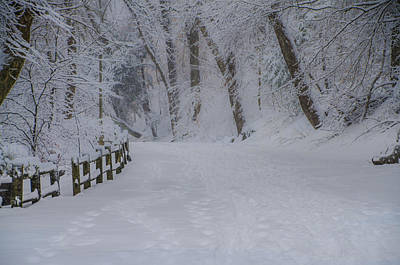 Forbidden Drive After A Snowfall Print by Bill Cannon