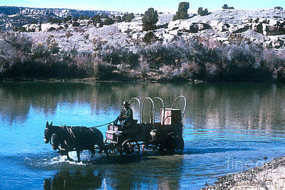 Cattle Drive Photograph - Ford The River by Jerry McElroy