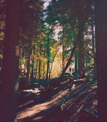 Mountain Photograph - Forest by Brennan Gallegos