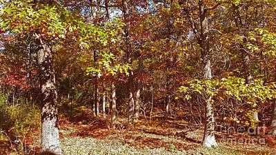 Forest In Bright Sunlight Original by Mary Ann Weger