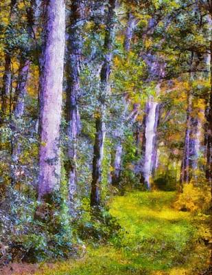 The Trees Mixed Media - Forest Light by Dan Sproul