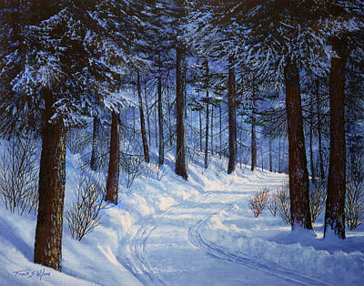 Cross-country Skiing Painting - Forest Road by Frank Wilson