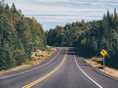 Photograph - Forest Road by Thomas Richter