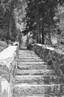 Forest Stairway Print by Glenn McCarthy Art and Photography