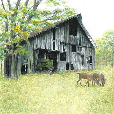 Deer Drawing - Forgotten by Carla Kurt