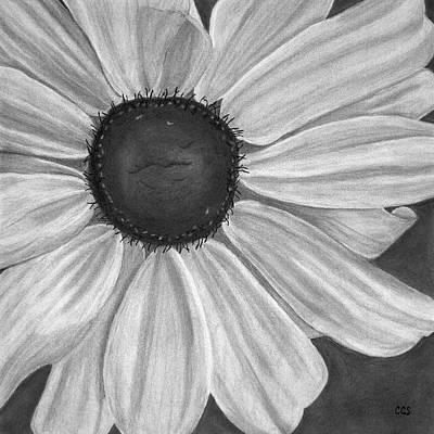 Formal Bloom Print by Christina Steward