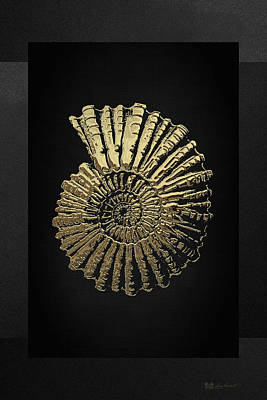 Upscale Digital Art - Fossil Record - Golden Ammonite On Black  by Serge Averbukh
