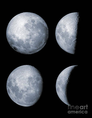 Four Phases Of The Moon Print by Rolf Geissinger