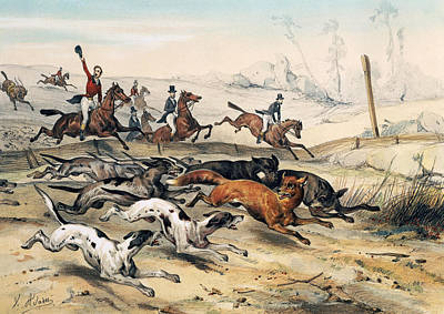 Hounds Drawing - Fox Hunting by Jean Victor Adam