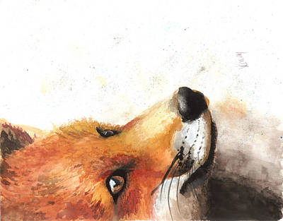 Wolf Painting - Fox In Gouache by Kate Cowan