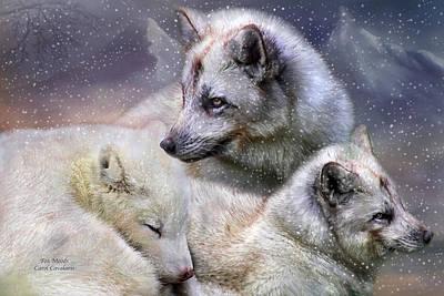 Snow Art Mixed Media - Fox Moods by Carol Cavalaris