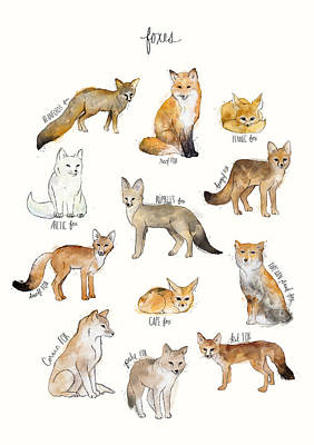Foxes Print by Amy Hamilton