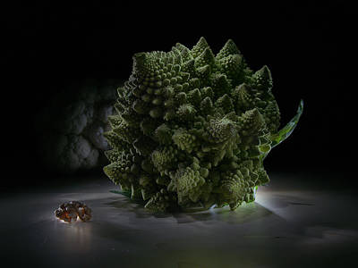 Broccoli Painting - Fractal Supper by Alexey Kljatov