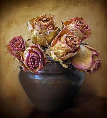 Petal Digital Art - Fragile Rose by Jessica Jenney